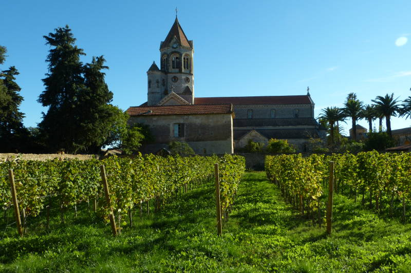 """Clos de la Charité, Vineyards of Generosity"" - YesICannes.com"